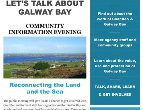 Have Your Say On Galway Bay